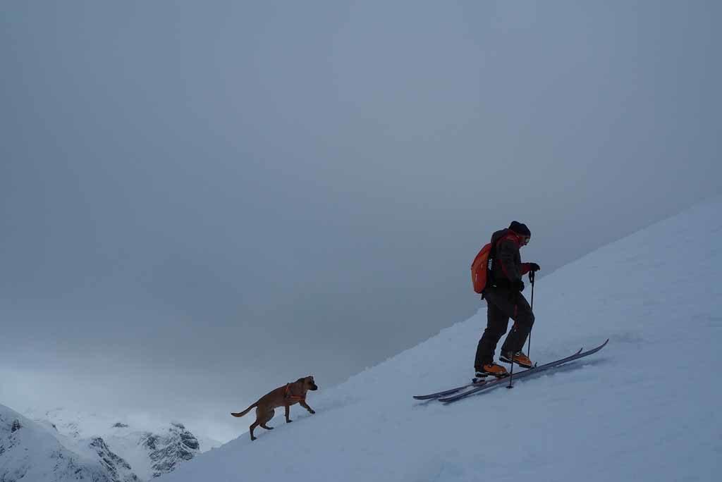 Obertauern – Skitour mit Patrik und Sunny Foto: Anika Giese