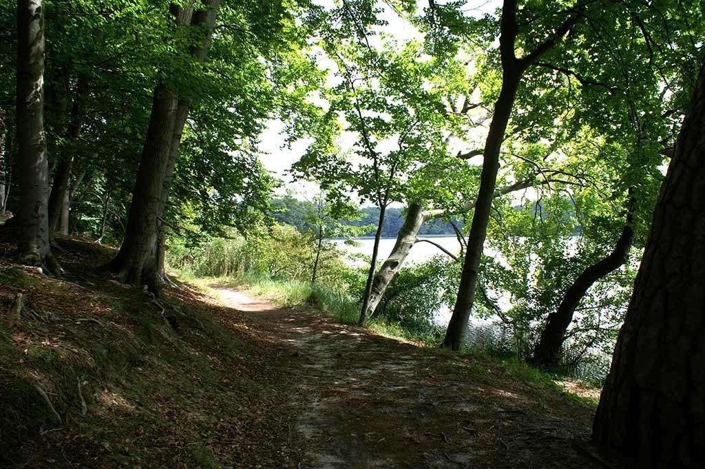 Um den See führt ein Wanderweg, der einem im 19. Jahrhundert angelegten, heute verwilderten Park des Schlosses Lanke passiert