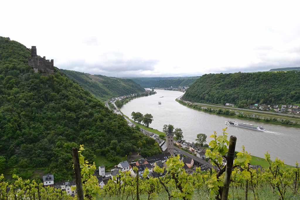 Der Wanderweg Rheinsteig führt 320 km durch das obere Mittelrheintal sowie die Weinanbaugebiet Rheingau