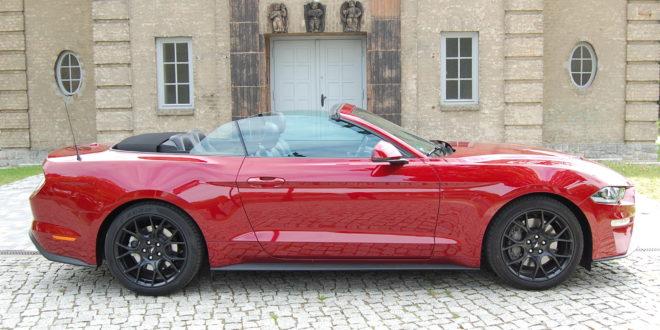 Ford Mustang Convertible Foto: F. Moritz