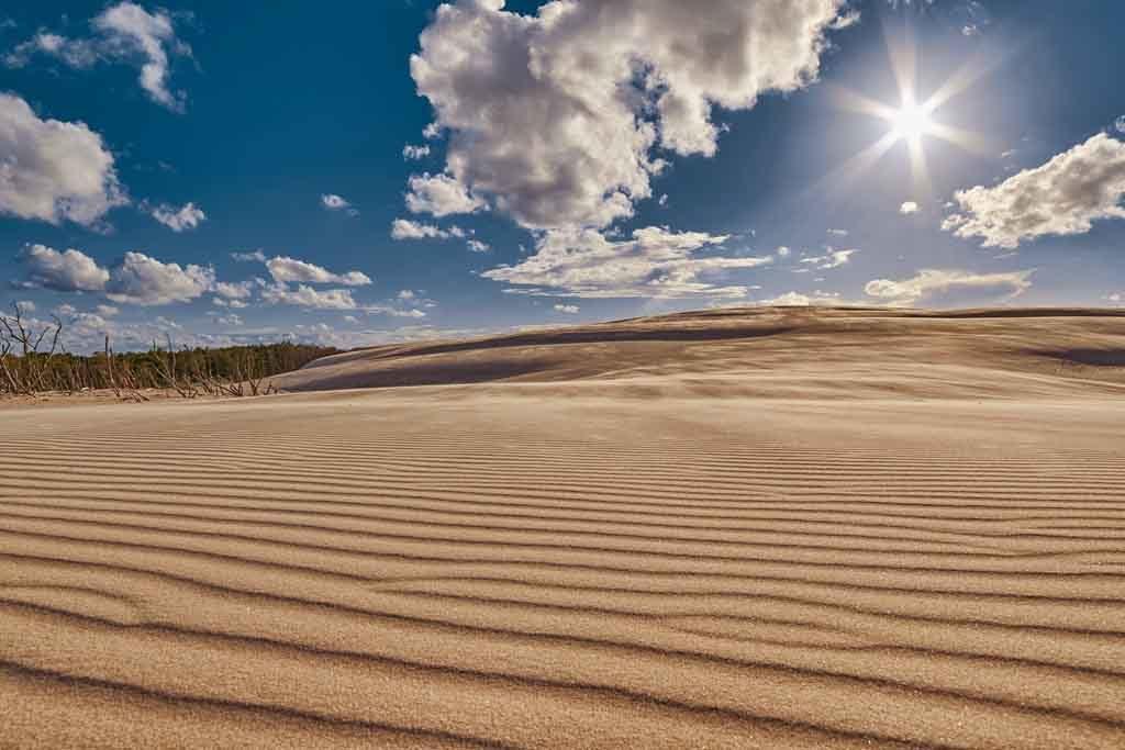 Die Wanderdünen von Leba bewegen sich mit bis zu 10 Metern im Jahr