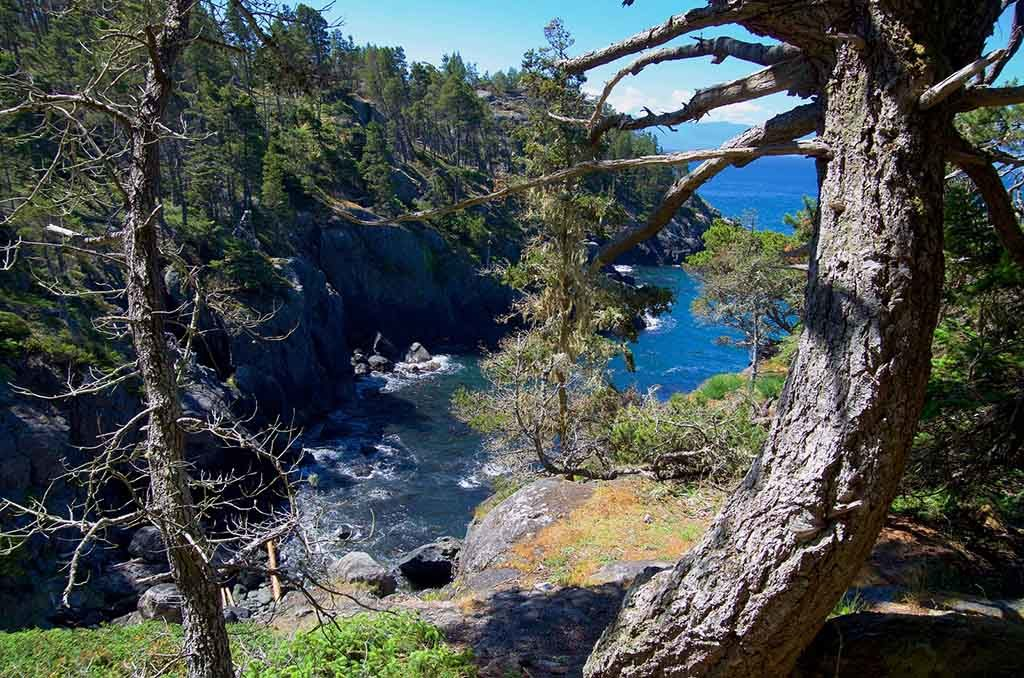 Sehr beliebt bei Aktivurlaubern, der Juan de Fuca Trail in Victoria