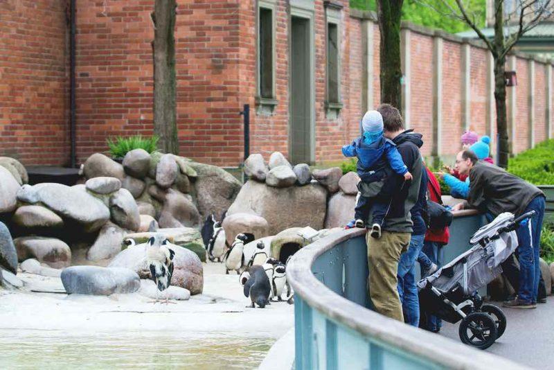Zoo in Nürnberg