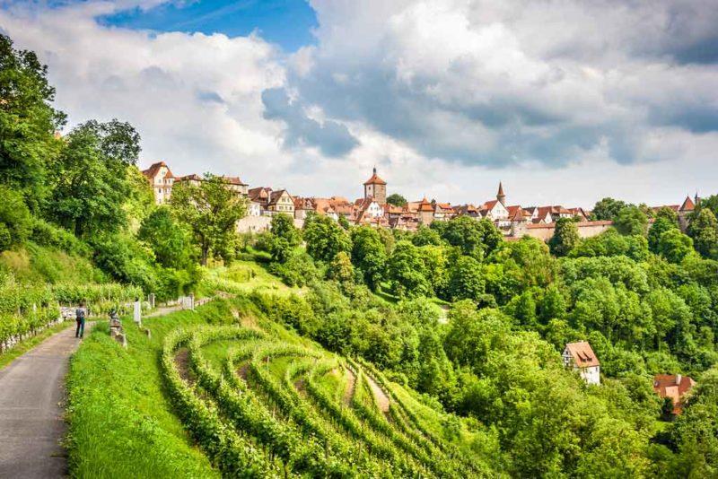 Im Weinland Taubertal gibt es über 30 Weingüter