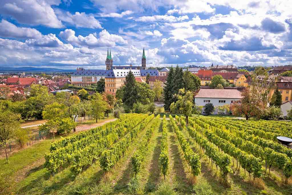Von den Weinbergen des Michaelsbergs kann man bis zum Bamberger Domplatz schauen